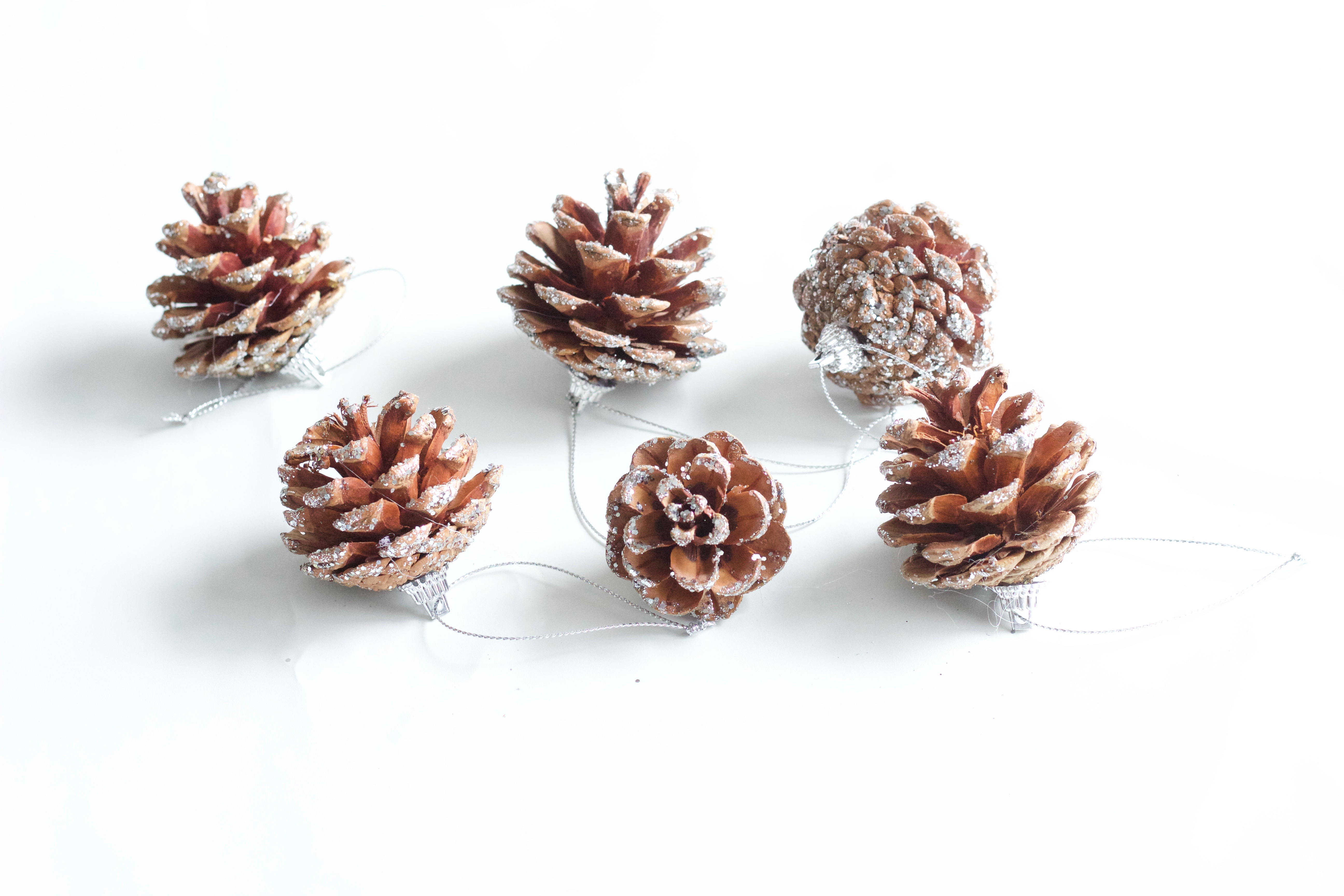 Do it yourself diy page nikkis plate blog best diy glittered pinecones for christmas decor solutioingenieria Image collections