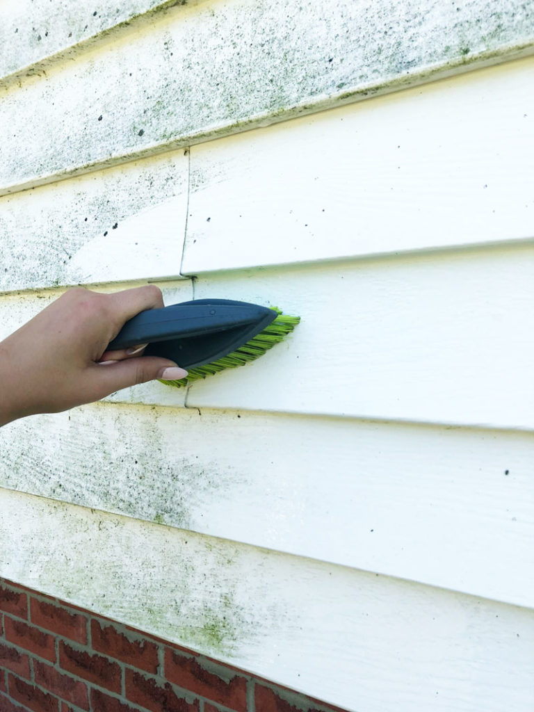 Using a scrub brush and a strong industrial cleaner to clean vinyl siding on our home
