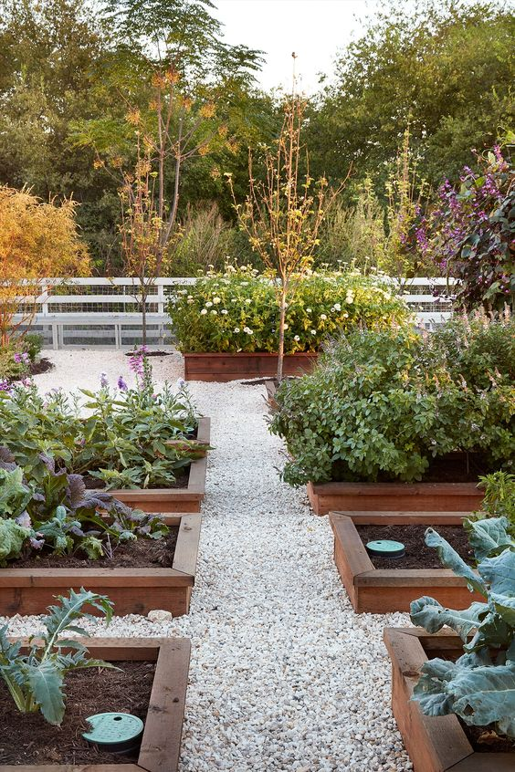 Starting a garden and growing fresh product, vegetables, or plants is a great way to make extra money to pay down your mortgage faster