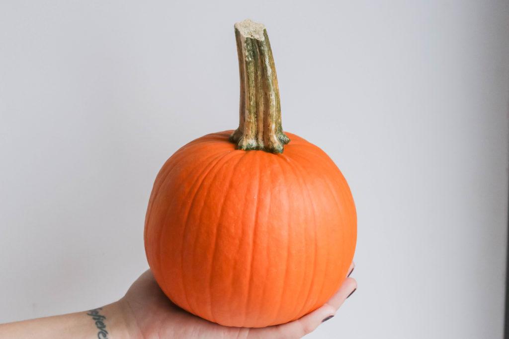 A pumpkin used in the pumpkin spiced soup recipe