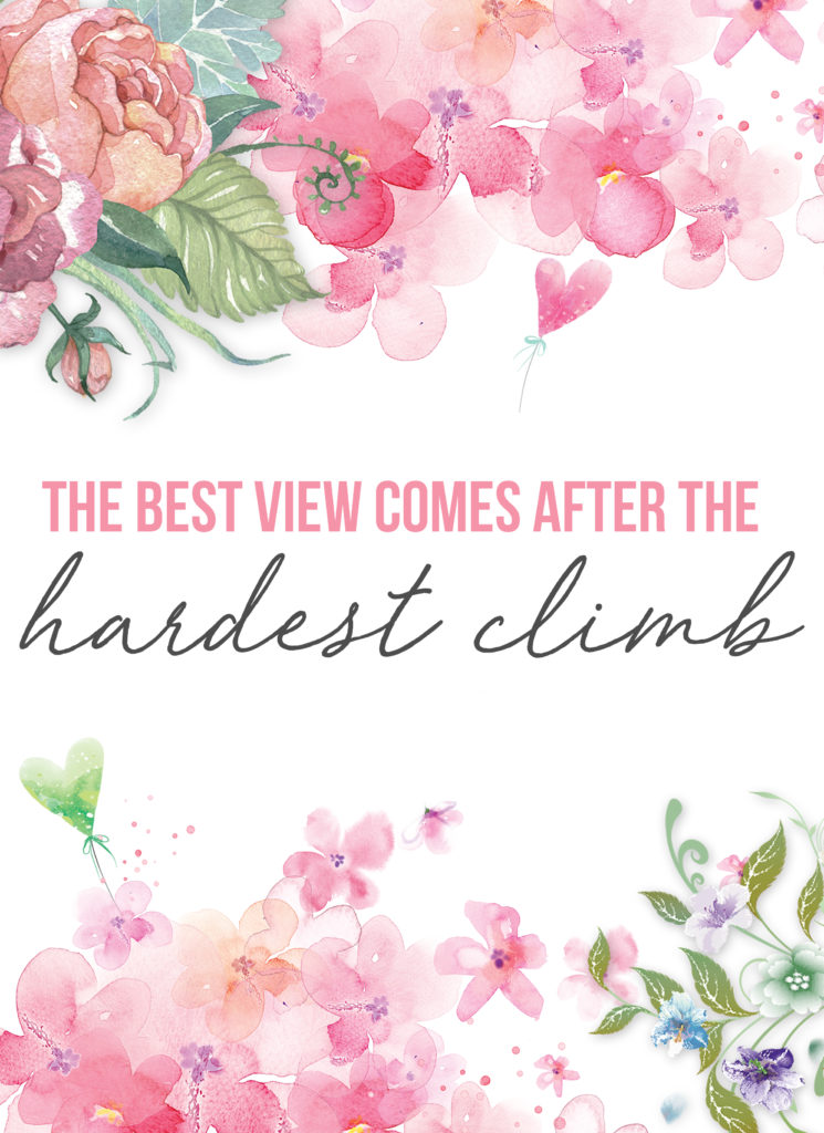 """This motivational wall art has soft pink watercolor flowers with an empowering quote that reads """"the best view comes after the hardest climb"""""""