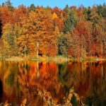 Best Canadian Destinations to Travel to in the Fall; Top 9 places to see autumn colours and fall foliage in Canada! #fall #autumn #canada #leaves