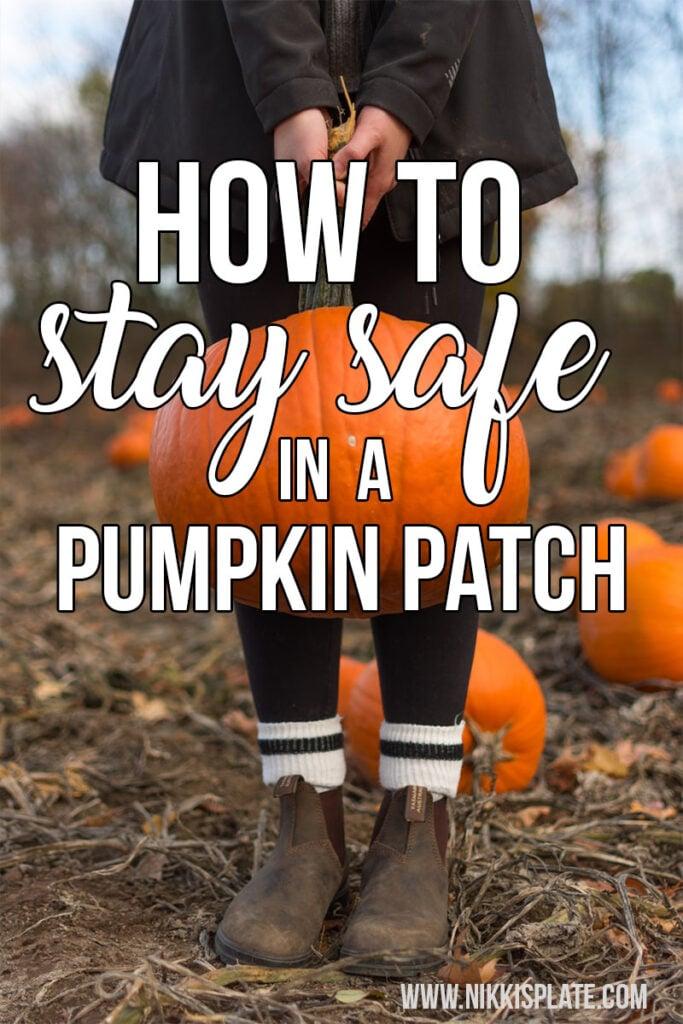 stay safe in a pumpkin patch Pinterest