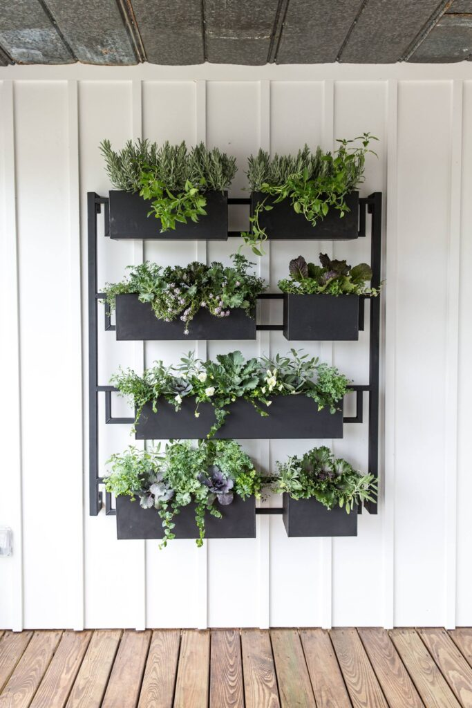 Garden boxes on a wall, side of house garden, greenery on wall, black planters
