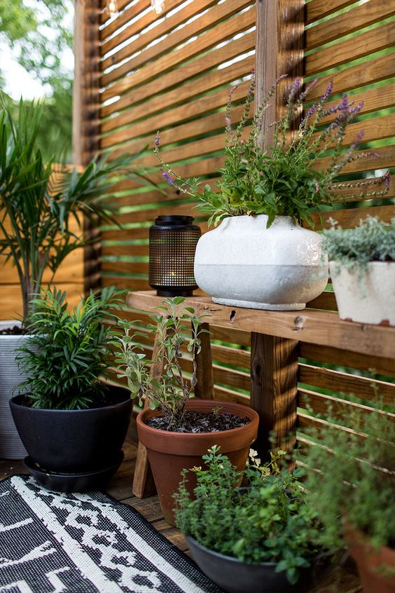 Tips for Styling your Deck this Summer; add greenery, potted plants